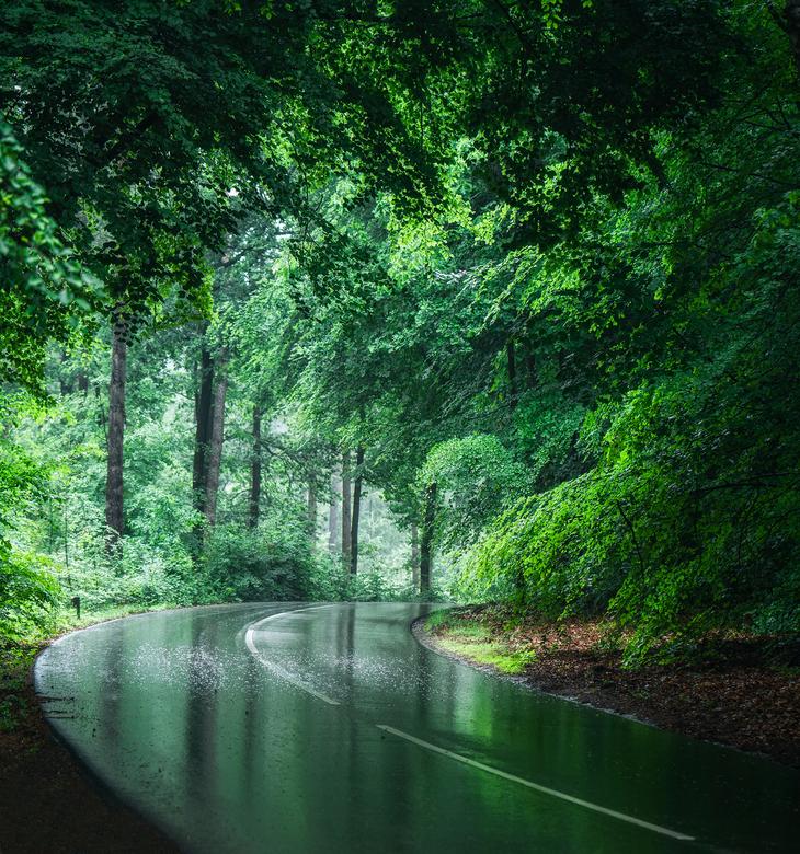 Posbank in de regen - Wilde eens een keer kijken of ik ook bij regenachtig weer een mooie opname kon maken bij de Posbank. Wel gelukt denk ik zo <img