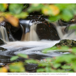 Leafs and water | La Hoegne | Jalhay (Belgie)