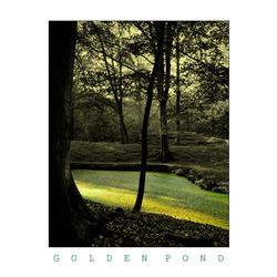 THE GOLDEN POND 02