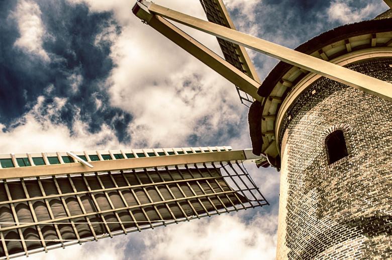 Groots - Korenmolen De Drie Lelies<br /> Deze molen staat aan (hoe toepasselijk) de Molenweg in Maasland