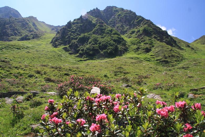 Berglandschap  - Tijdens deze prachtige wandeling naar de Edelhütte in Mayrhofen (Oostenrijk) kwam ik deze mooie plek tegen.