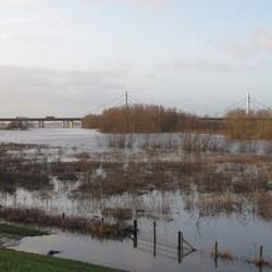 hoogwater bij Ewijk