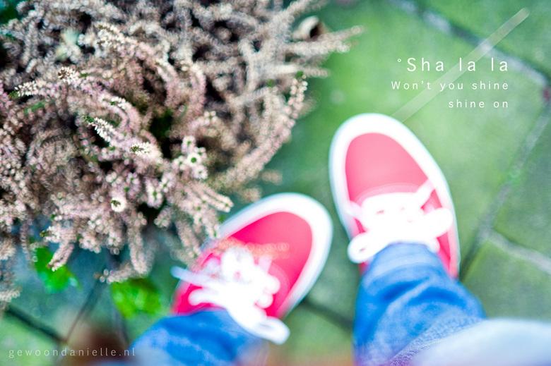 """Sha la la - Ik heb de neiging om foto&#039;s te maken van nieuwe schoenen, zeker als het mooi weer. Dus hier is er weer eentje <img  src=""""/images/smil"""