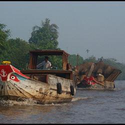 Mekong Delta II