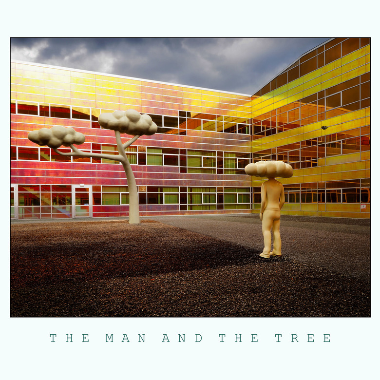 THE MAN AND THE TREE -