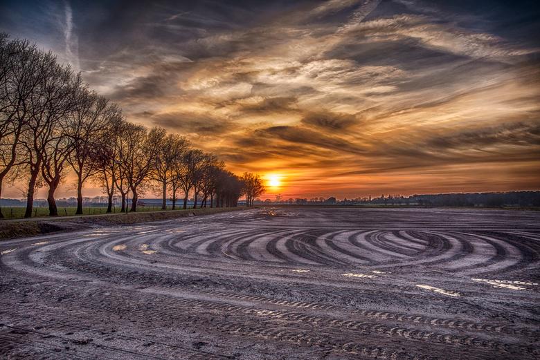 sporen op het land - sporen op de akker tijdens zonsondergang 6-1-2017 natuurgebied De Pannenhoef Zundert/Etten-Leur