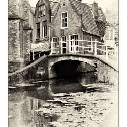 Delft 6