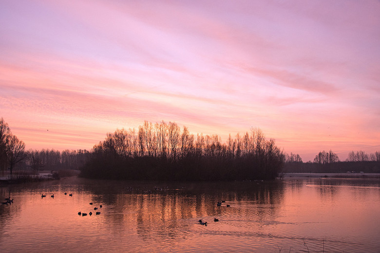 Nature awakes - Zonsopgang 28 dec