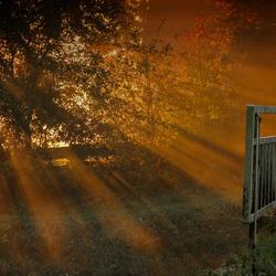 *Stralende herfst*