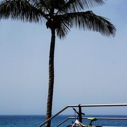 Naar het strand......