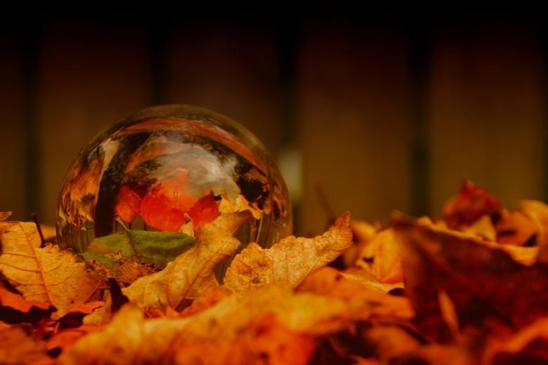 mijn glazen bol nr 55547a  - Heb je ook een glazen bol? Ik heb een groep aangemaakt op Zoom: Bolbeelden. Mss leuk om mee te doen?