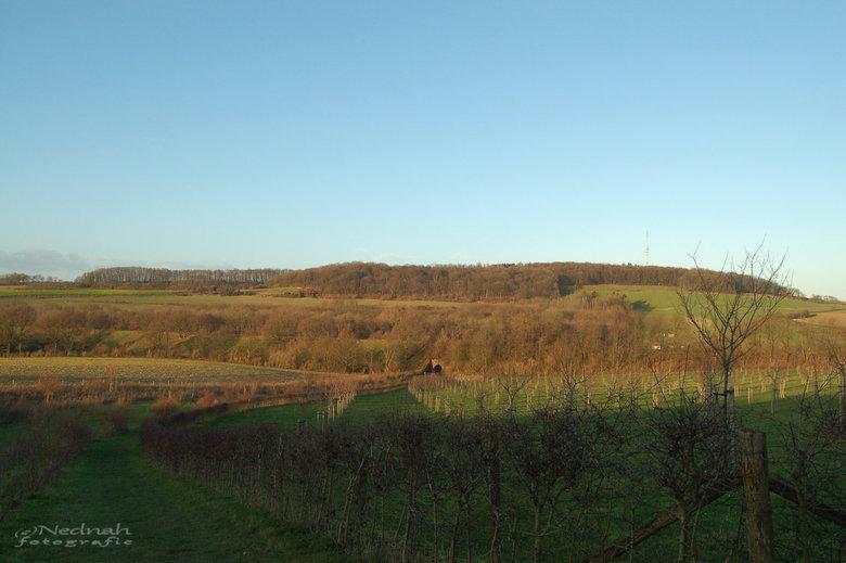 Licht en schaduw in Limburgs landschap - Oudjaarsdag in de namiddag rond Wittem. Heuvels toch echt hoog genoeg om schaduw te produceren, wat de foto d