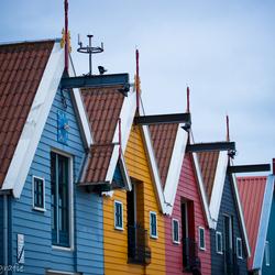 Gekleurde huisjes Zoutkamp