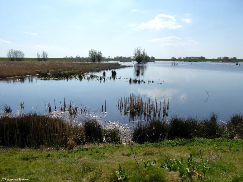 Water Landschap - Natuur gebied de reevediep bij de plaats Kampen