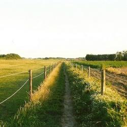 Greenfield Green fiels