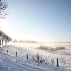 Overbelichting en mist in de ochtend