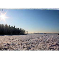 sneeuwvlakte