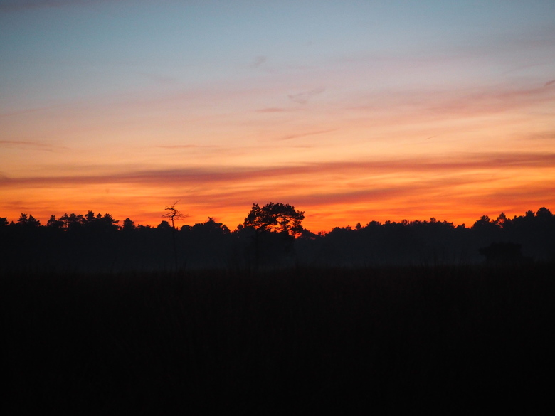 Zonsondergang - Prachtige zonsondergang in de Drunense duinen