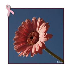 Nog twee dagen Pink Ribbon