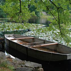 vijver met boot