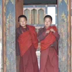 monikken in Bhutan