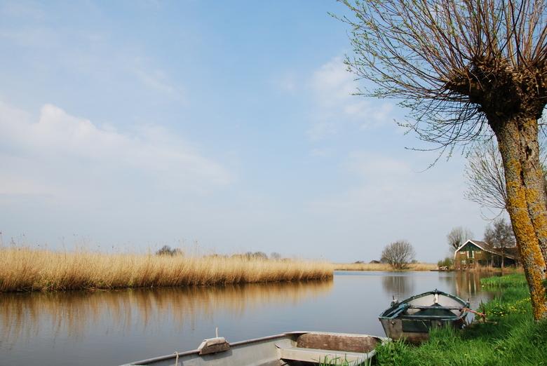 Hollands landschap -