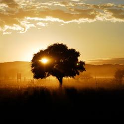 The sossusvlei in Namibië