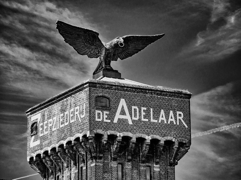 De Adelaar - Dit beeld staat al een eeuw boven op een oud fabriekspand in Wormerveer. Tijdens de 2e wereldoorlog hebben de Duitsers deze adelaar in de
