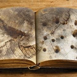 wat vertelt ons dit oude boek eigenlijk?...
