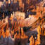 Bryce canyon - detail