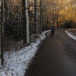 Wandelen op een winterse dag