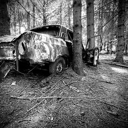 Car graveyard 2