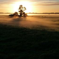 In de polder.
