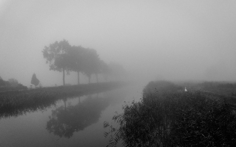 _DSC0776-1(1) - Mist langs het kanaal
