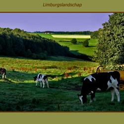 Limburg 1