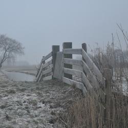 grauwe winters dag