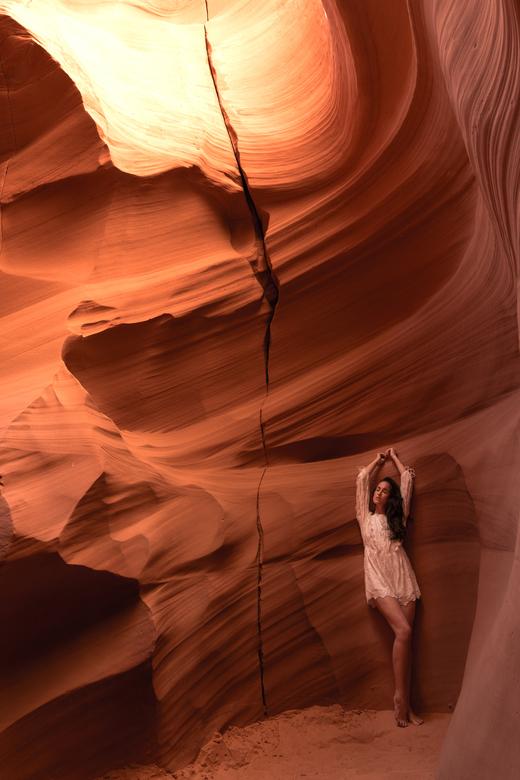 Desert heat  -