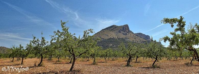 Sierra de Maria. - De Sierra de María is een bergketen in het noorden van de provincie Almeria in het zuiden van Spanje. Het kalk-massief maakt deel u