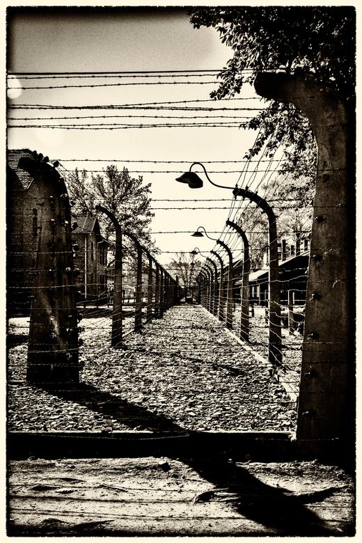 de prikkeldraad...Auschwitz