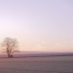 Frans landschap