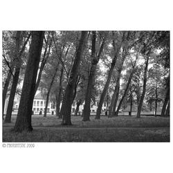 Begijnhof Brugge - Het Witte Dorp