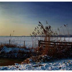 Winter Part II
