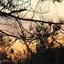 Vlieland sunset