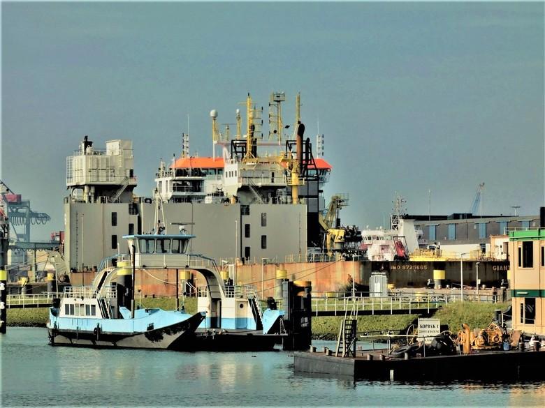Waalhaven (2) -
