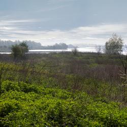 Rijn bij Grebbeberg