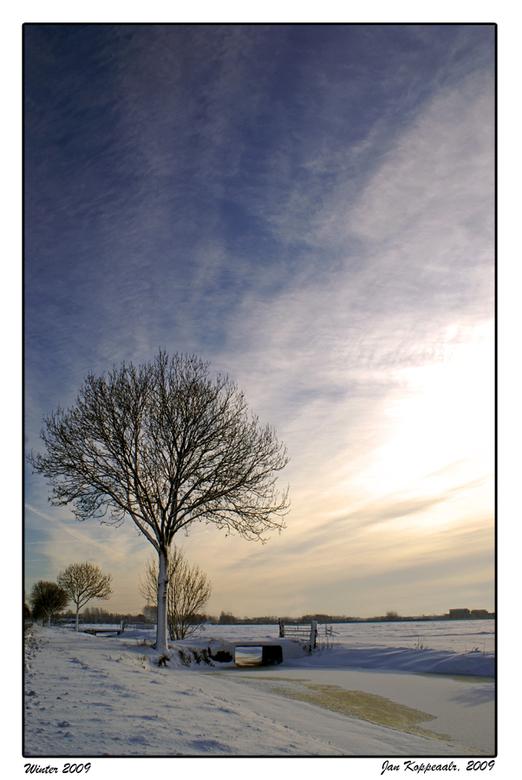 Winter 2009 - Eentje van vanmorgen. De zon scheen nog flauwtjes. De lucht was nog redelijk blauw. Nu is hij loodgrijs en wachten we op nieuwe sneeuwbu