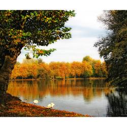 Autumn Colors3!!