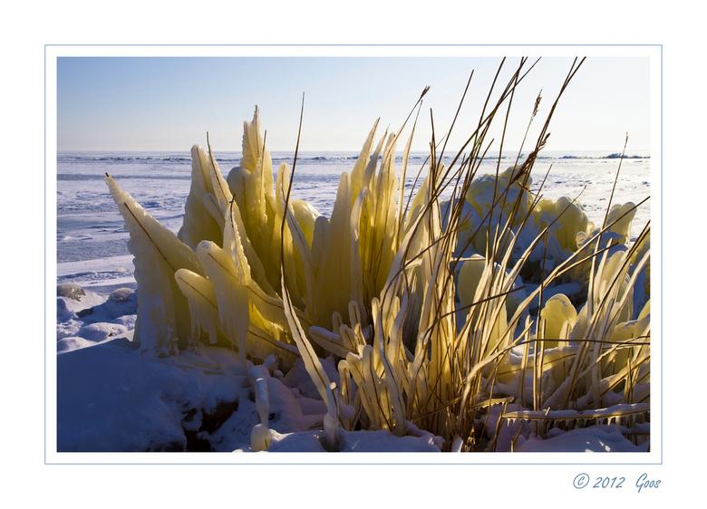 Op de Afsluitdijk 8 - Bij Breezanddijk op de Afsluitdijk ook weer de auto uit en naar het ijs toe gelopen. De zon door het bevroren riet geeft mooie k