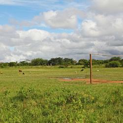 Voetbalveld in Kwazulu Natal, Zuid-Afrika