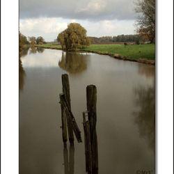 Biesbosch vanaf de Kroonbrug
